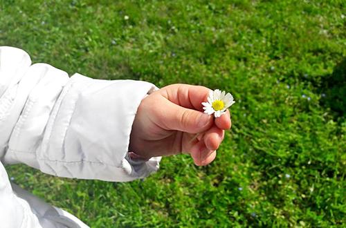 scuola dell'infanzia santa maria delle grazie